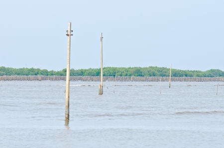Electronic poles are drowning, Effect from global warming, This area was a village  photo