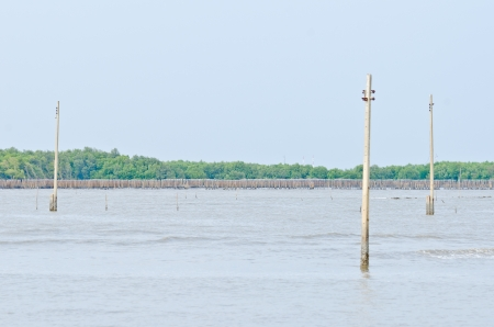 thailand flood: Electronic poles are drowning, Effect from global warming, This area was a village