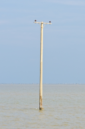 Electronic pole is drowning, Effect from global warming, This area was a village  photo