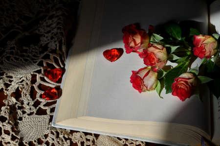 penumbra: Red roses Stock Photo