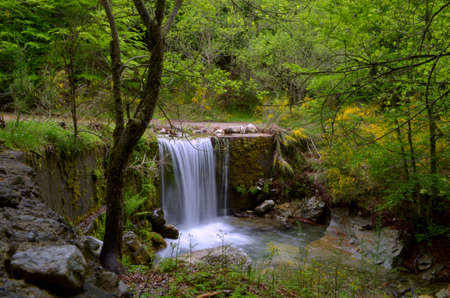 excursions: Gambarie path