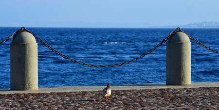 via: via marina - Reggio Calabria Stock Photo