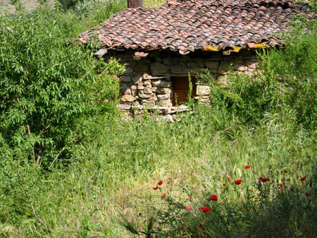 Old ruined house in an overgrown yard in rural Macedonia