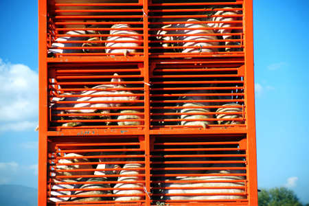 Pigs and hos raised for food being transported to a butcher house in an orange truck on a sunny day Banque d'images
