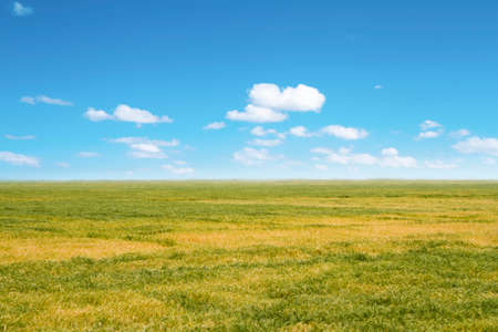 farmland background with perfect sky photo