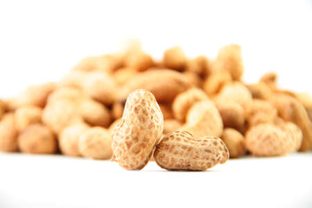 fresh peanut with the pure white background photo