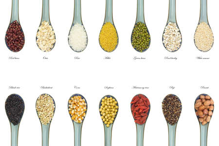 collection of 14 different kinds of grain with china scoop  isolated on white background photo