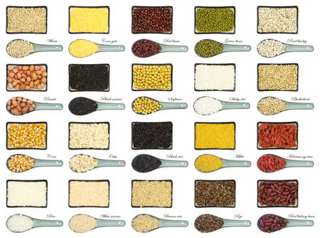 collection of 20 different kinds of grain isolated on white background photo