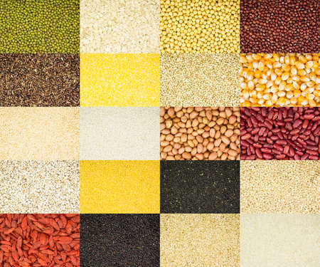 green wheat: collection of 20 different kinds of grain as background Stock Photo