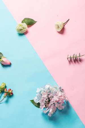 Many Flower on Pink and Blue Background.