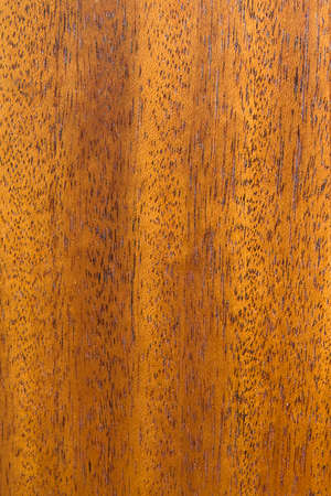 caoba: Caoba textura de madera de fondo
