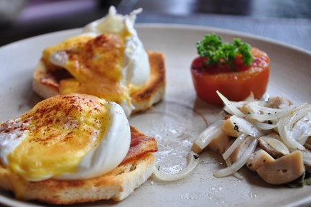 Eggs Benedict , poached egg on toasted bread photo