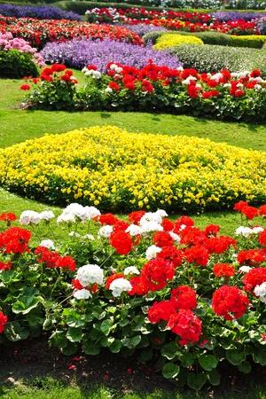 paisajismo: Flores en el jard�n Foto de archivo