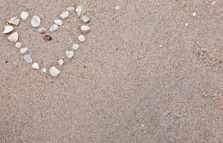 Heart made from shells in the sand background photo