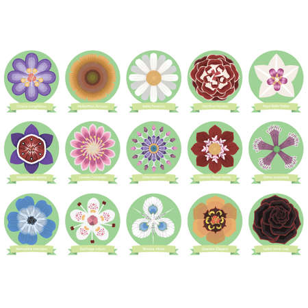 Set of flower icons Stock Vector - 43173239
