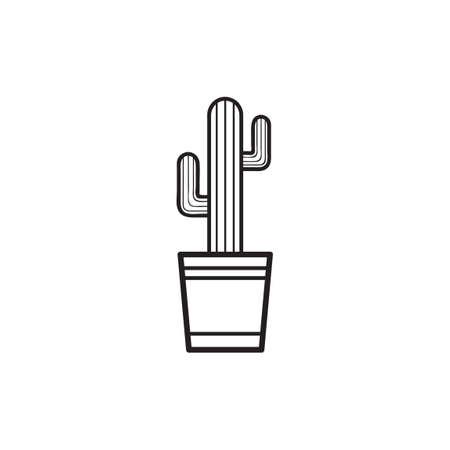 chlorophyll: Cactus Illustration