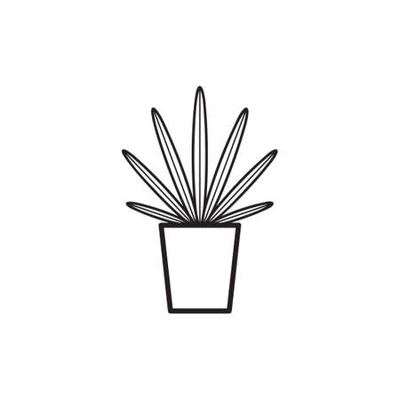 chlorophyll: Caribbean agave Illustration