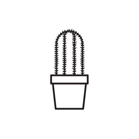 chlorophyll: Cardon cactus