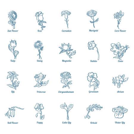 corn poppy: Set of flower icons Illustration