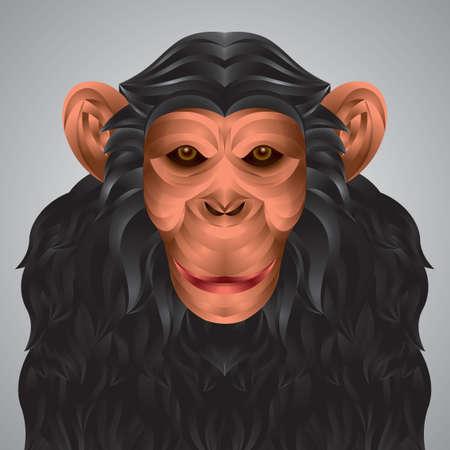 3 dimensional: Three dimensional chimpanzee