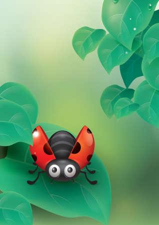 ladybug on leaf: Ladybug on a leaf Illustration