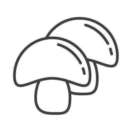 button mushroom: Button mushroom Illustration