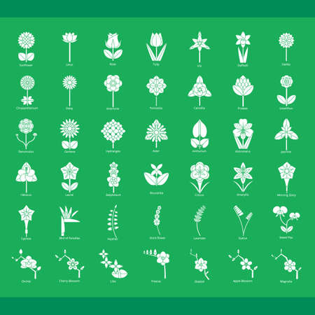 heather: Collection of flower icons Illustration