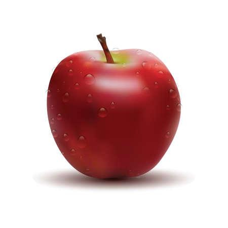 three dimensional: Three dimensional apple Illustration