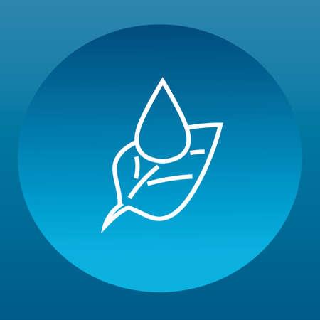 leaf water drop: Leaf with water drop