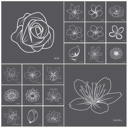 Collectie van bloem iconen