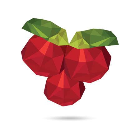 frutos rojos: Berries