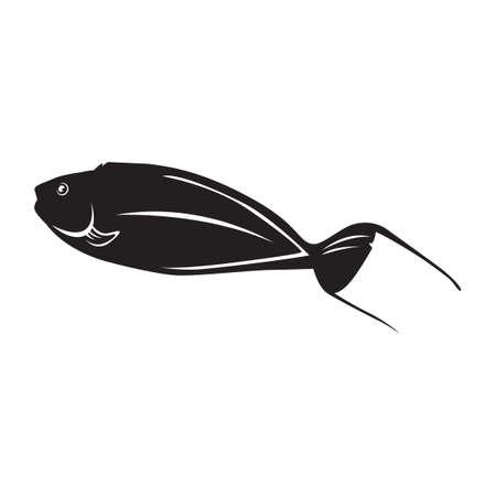 lyretail: Lyretail anthias fish