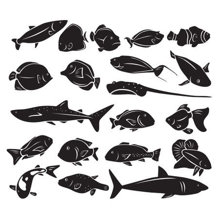 blue tang fish: Silhouette of sea fishes