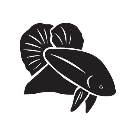 betta: Betta fish
