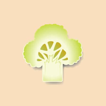 broccoli: Sliced broccoli