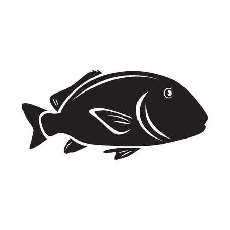 bream: Sea bream fish