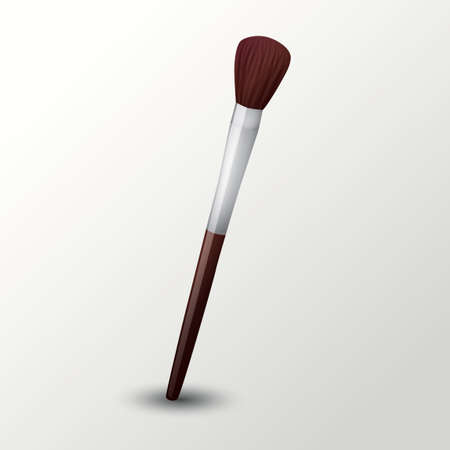 make up brush: