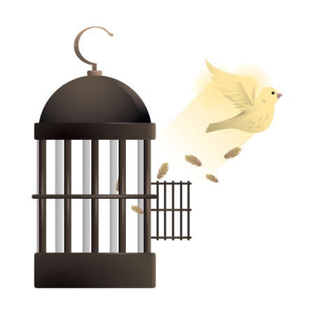 Dove flying out of cage