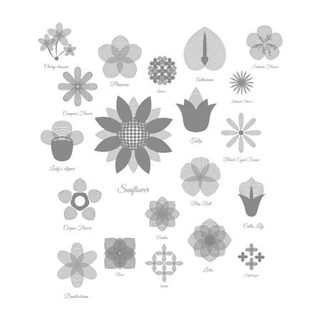 eyed: Collection of flower icons Illustration