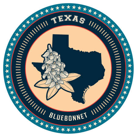 texas state: Texas state label Illustration