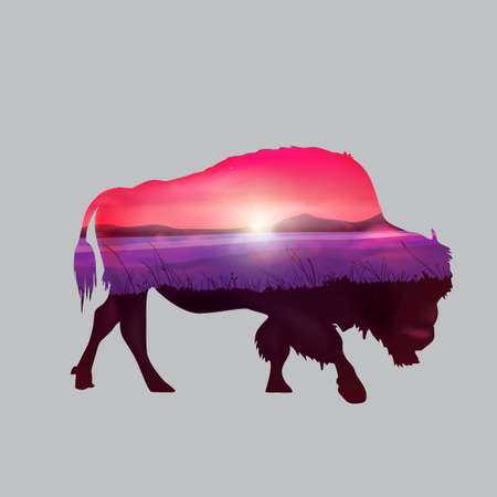 bison: Double exposure of bison and nature