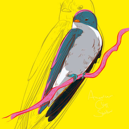 rossignol: Rossignol Illustration