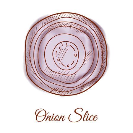 onion slice: Onion slice Illustration