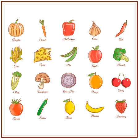 onion slice: Collection of vegetables and fruits Illustration