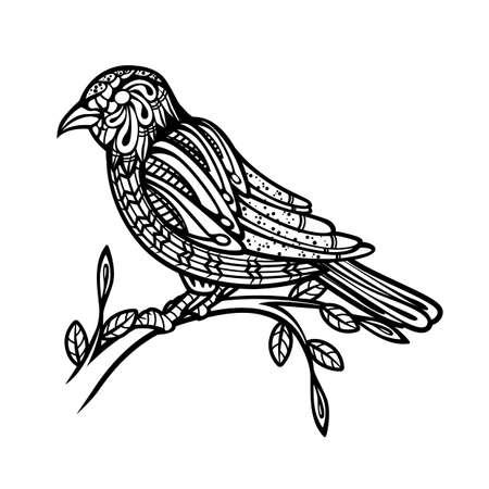 oviparous: Bird Illustration