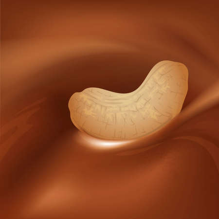chocolate swirl: Chocolate swirl with cashew nut Illustration