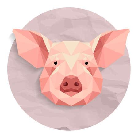 Pig Stok Fotoğraf - 45402196