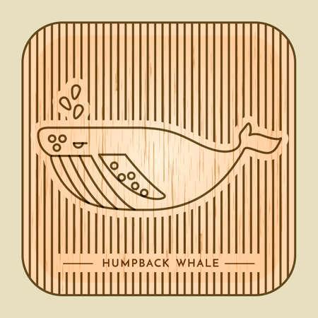 humpback: Humpback whale