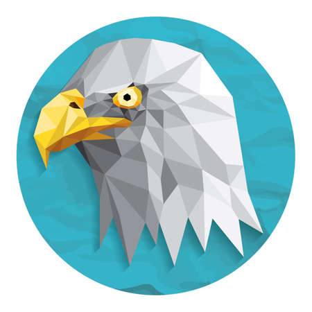shrewd: Bald eagle Illustration