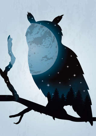 double exposure: Double exposure owl and night sky